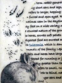 Bunny in Wax