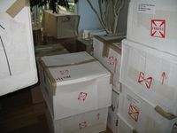 Livingroom a mess with 39 boxes