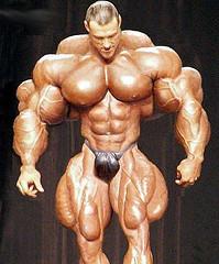 SOFA on Steroids