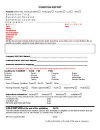 CONDITION Report from the Professional Guidelines for shipping art or craft
