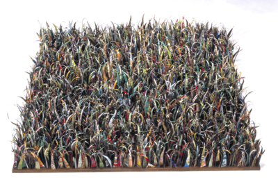 A Square Yard of Grass by Harriete Estel Berman is about the environmental impact of lawns on our environment..Lwuy