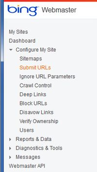 Bing Webmaster SUBMIT urls close ups