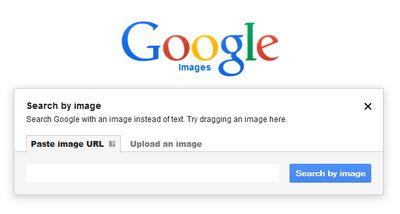 GoogleImageSearchBox-options