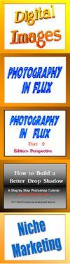 Photography-In-Flux-Niche-Marketing-Vertical