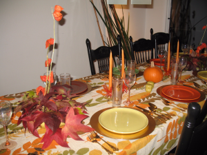 Thanksgiving 2015 056