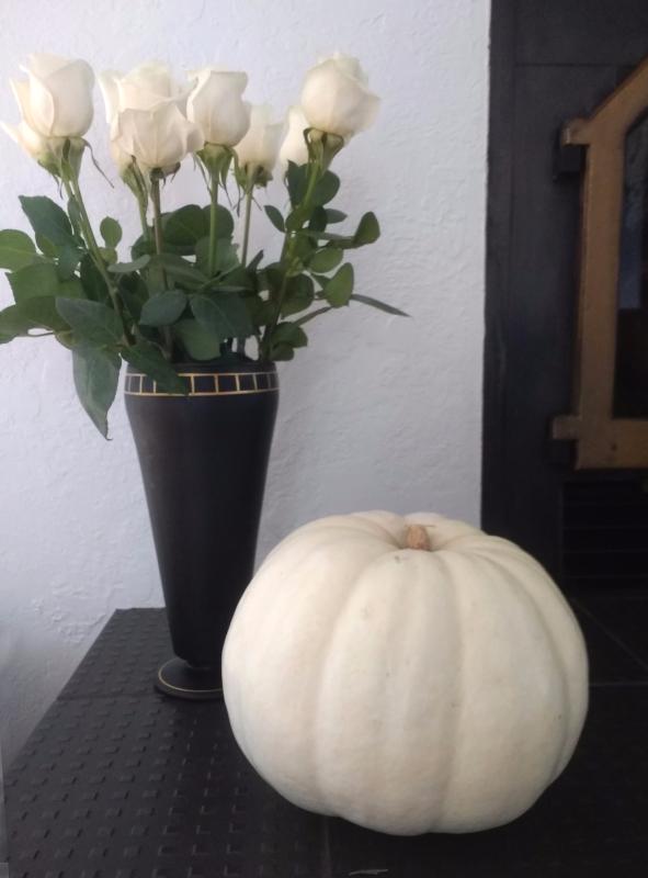 White roses and white pumplin