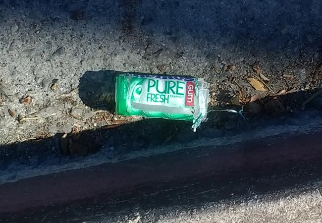 Pure-fresh-gum